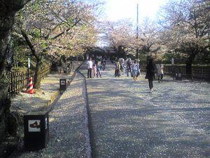 Tsurugajo2