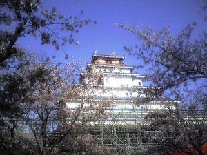 Tsurugajo4