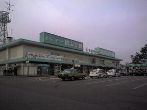 Ichinosekist