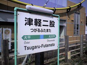 Tsugarufutamatast1