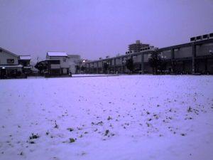 Snow110215