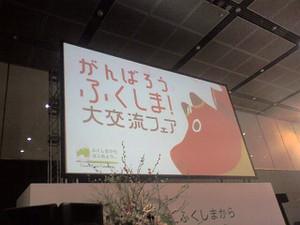 Fukushimafair03